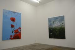 展示風景 (2015個展)
